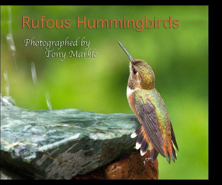 View Rufous Hummingbirds by Tony Markle