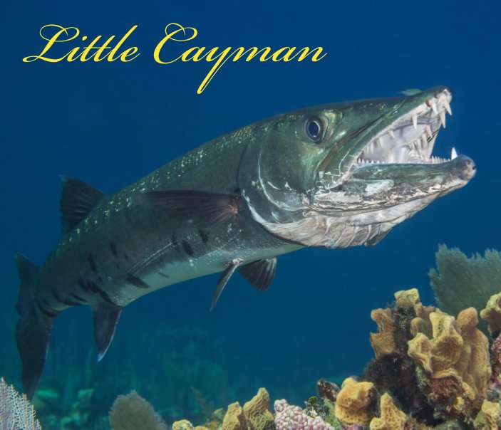 View Little Cayman by Mark Etter