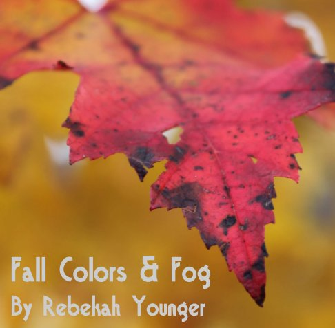 View Fall Colors & Fog by Rebekah Younger