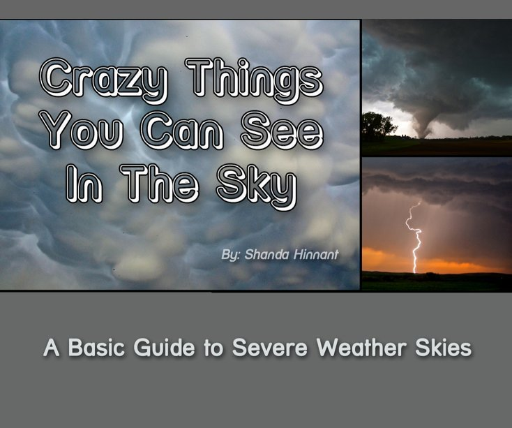 View Crazy Things You Can See in the Sky by Shanda Hinnant