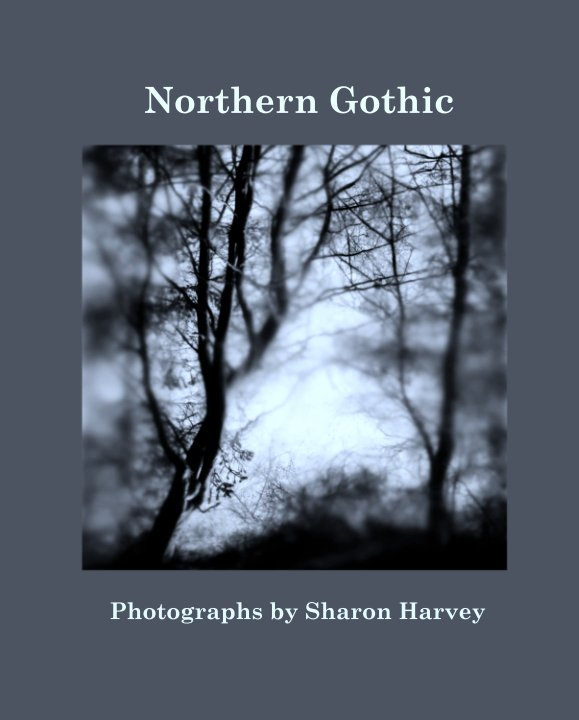 View Northern Gothic by Photographs by Sharon Harvey