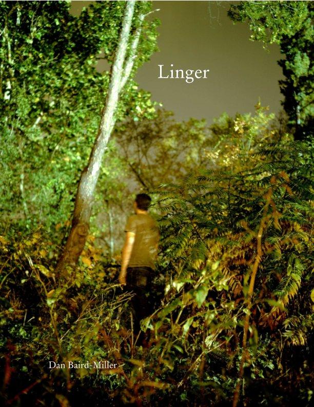 View Linger by Dan Baird-Miller