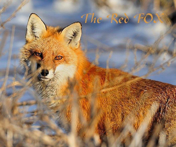 Bekijk The Red FOX op Angel Cher
