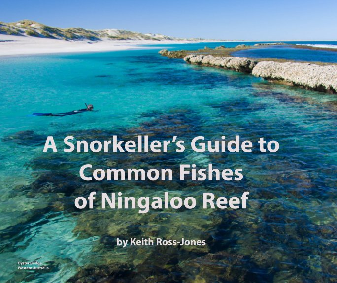 View A Snorkeller's Guide to Common Fishes of Ningaloo Reef by Keith Ross-Jones