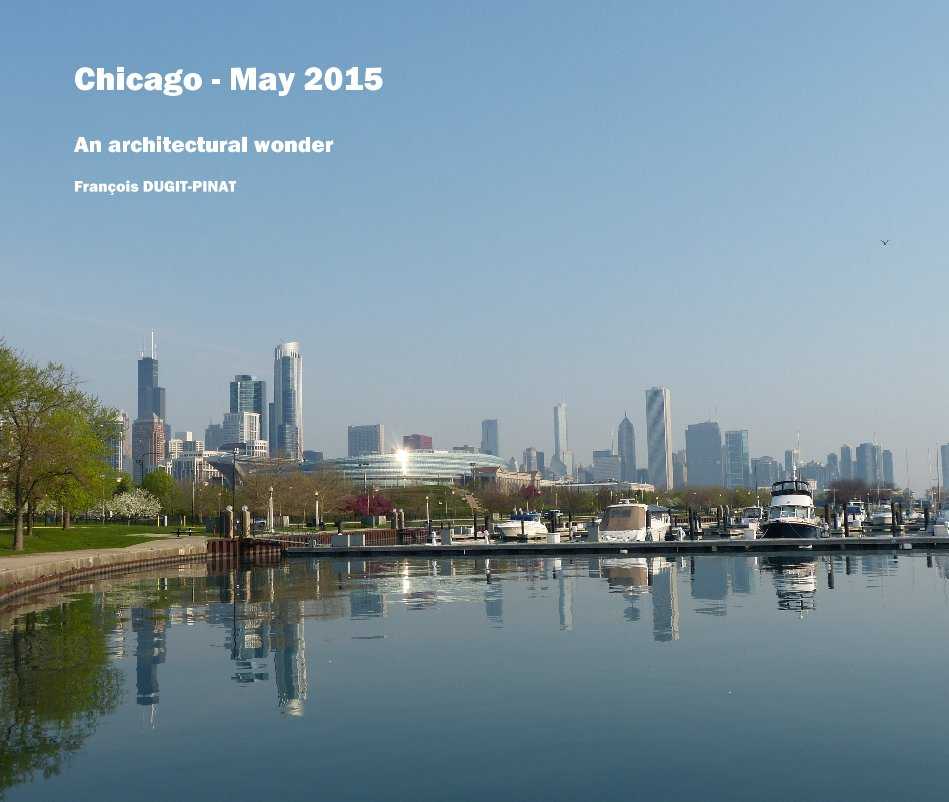 View Chicago - May 2015 by François DUGIT-PINAT