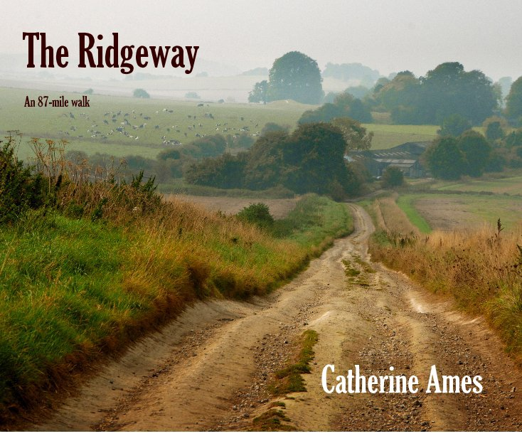 View The Ridgeway by Catherine Ames