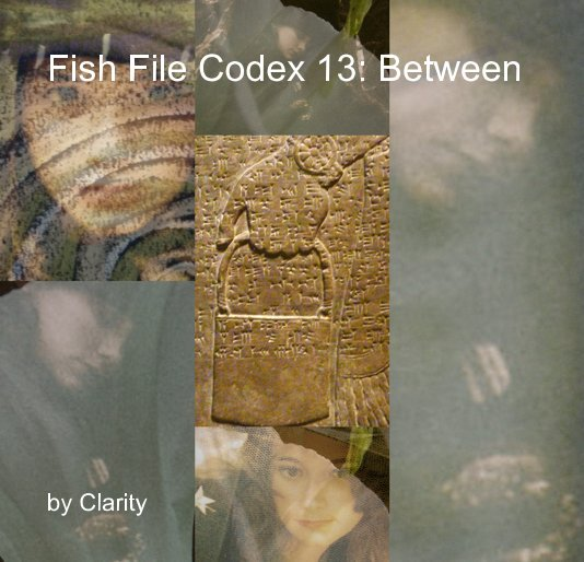View Fish File Codex 13: Between by Clarity