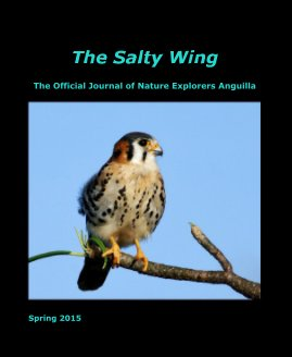 The Salty Wing Spring 2015 - Education photo book