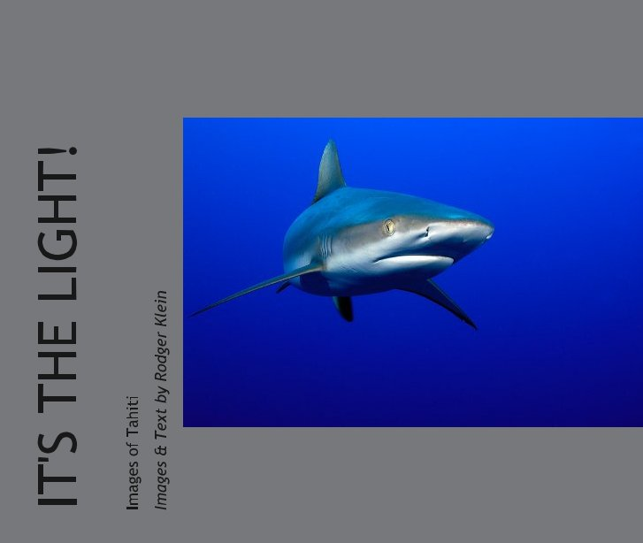 View IT'S THE LIGHT! by Images & Text by Rodger Klein