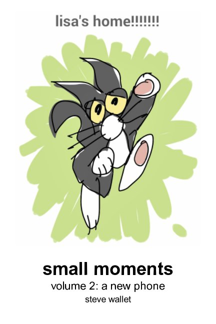 View small moments, vol. 2 by Steve Wallet