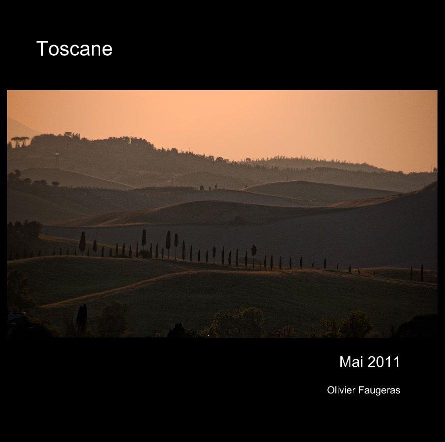 View Toscane by Olivier Faugeras