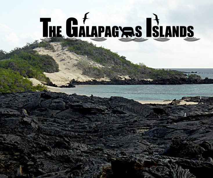 View Galapagos Island by Sue Norrie