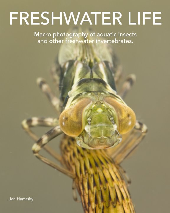 View FRESHWATER LIFE by Jan Hamrsky