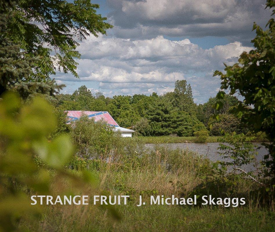 View STRANGE FRUIT J. Michael Skaggs by J. Michael Skaggs