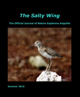 The Salty Wing Summer 2015 - Education photo book
