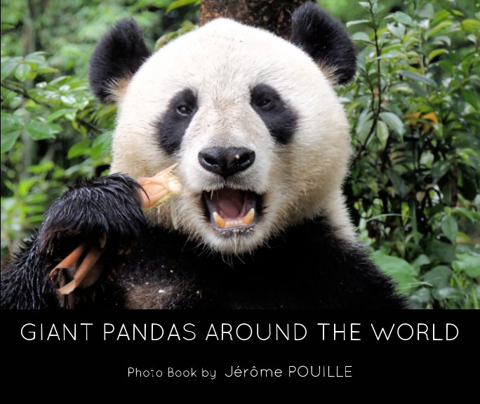 View Giant pandas around the world by Jérôme POUILLE