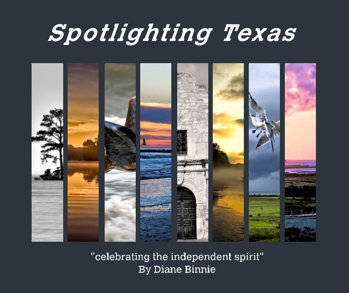 View Spotlighting Texas by Diane Binnie