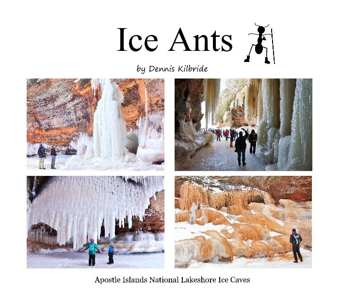 View Ice Ants by Dennis Kilbride