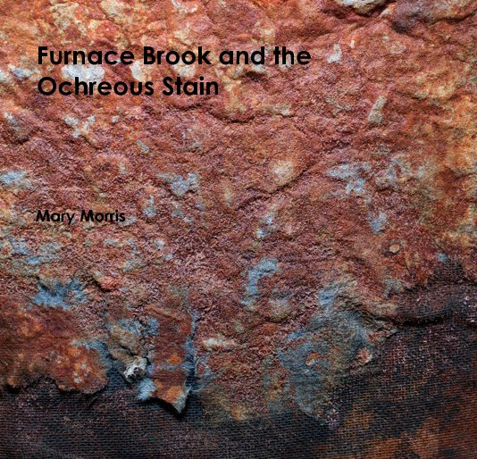 View Furnace Brook and the Ochreous Stain by Mary Morris