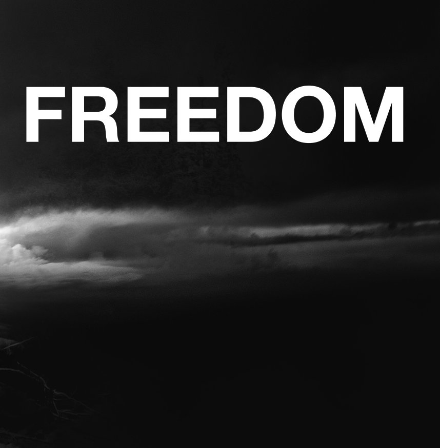 View FREEDOM [book one] by elsa marie