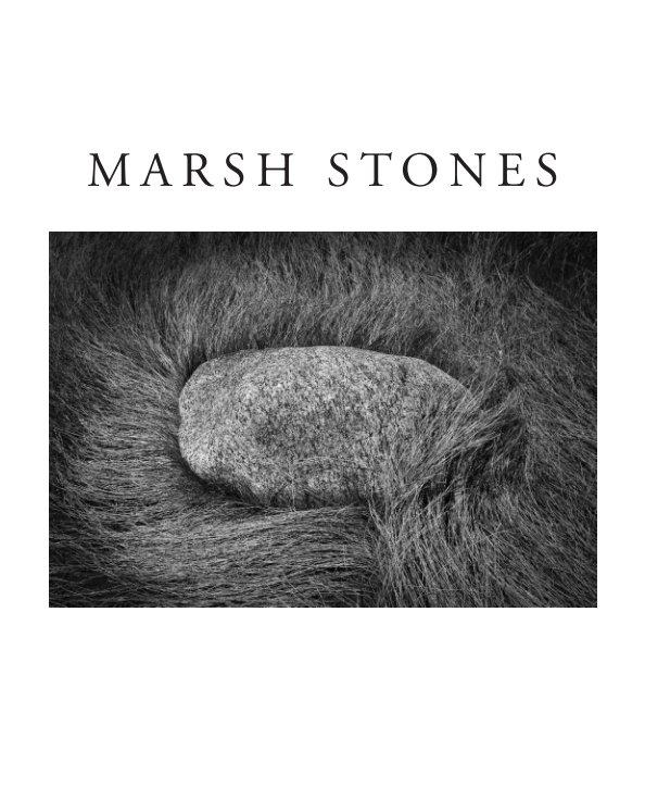 View Marsh Stones of Hammonasset by Michael Fanelli