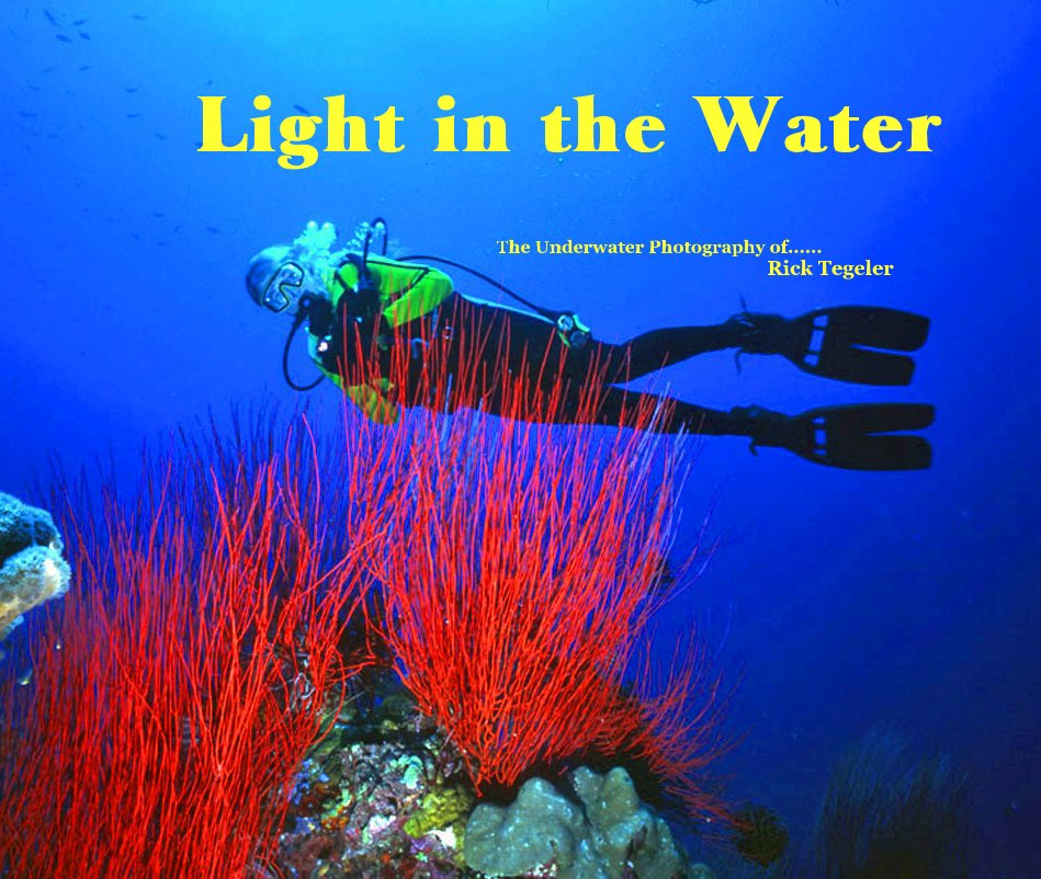 View Light in the Water by Rick Tegeler