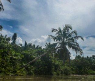 ANAI LOITA - Voyages livre photo