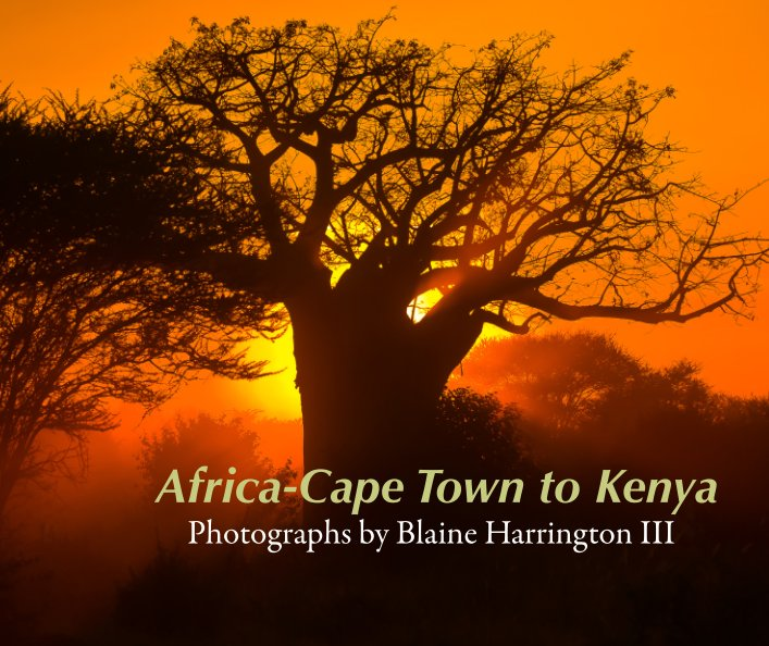 View Africa-Cape Town to Kenya by Blaine Harrington III