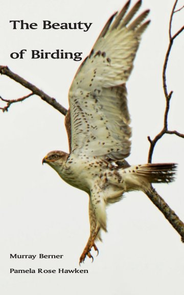 View The Beauty of Birding by Murray Berner and Pamela Rose Hawken