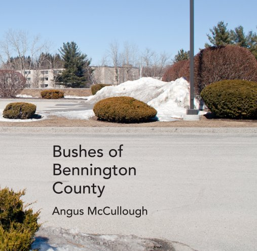 View Bushes Of Bennington County by Angus McCullough