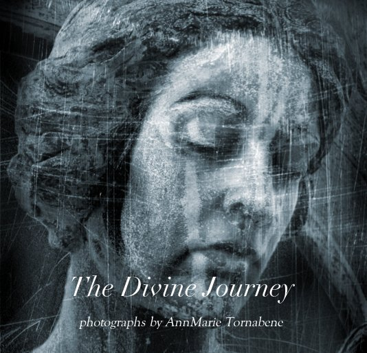 View The Divine Journey by AnnMarie Tornabene