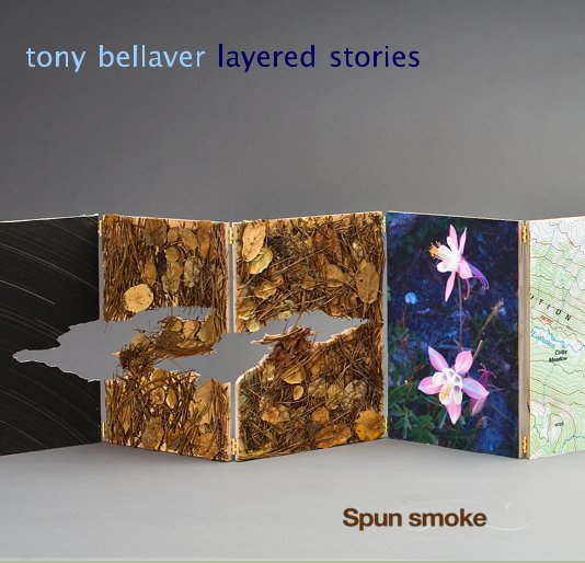 View tony bellaver layered stories by TONY BELLAVER
