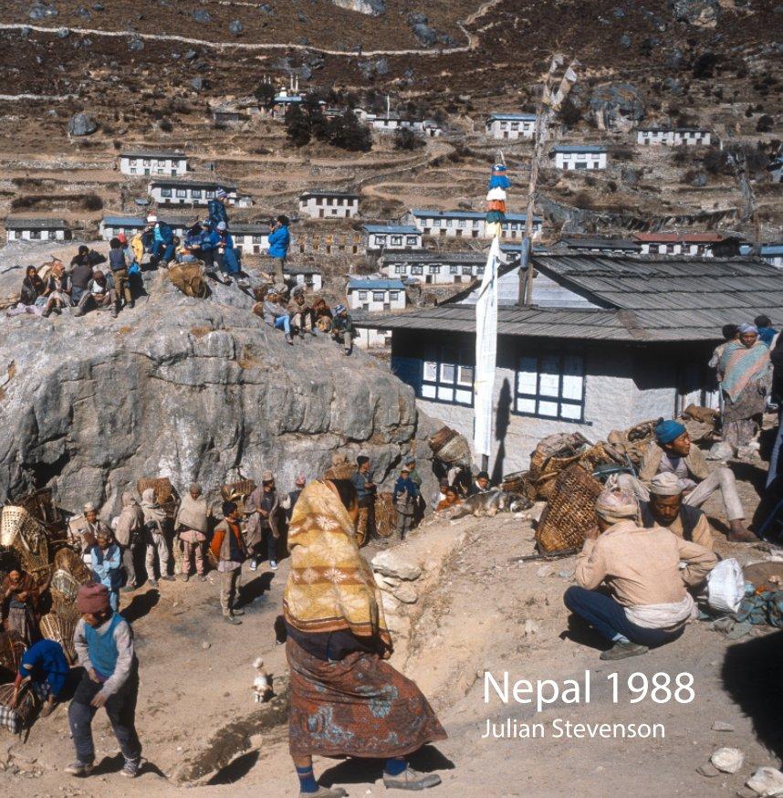 View Nepal 1988 by Julian Stevenson