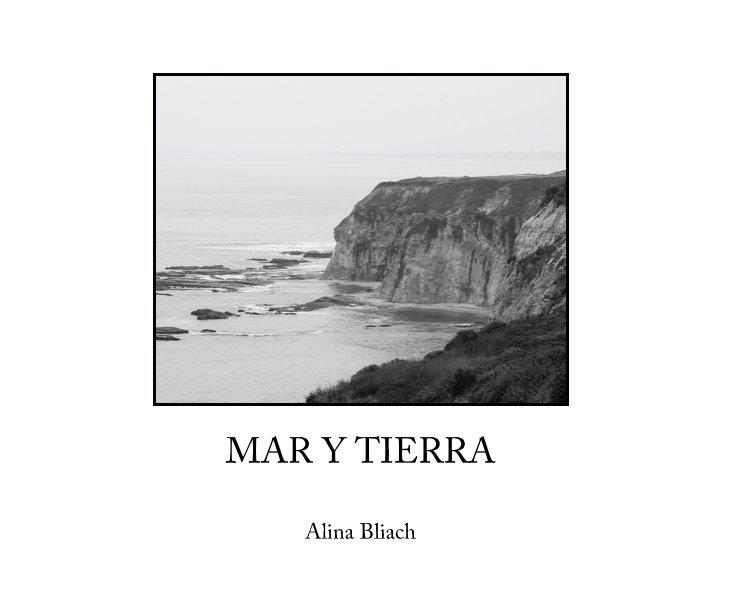 View MAR Y TIERRA by Alina Bliach