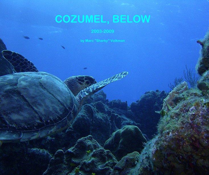 "View COZUMEL, BELOW by Marc ""Sharky"" Volkman"