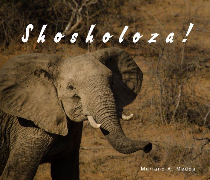 View Shosholoza! by Mariano A. Medda