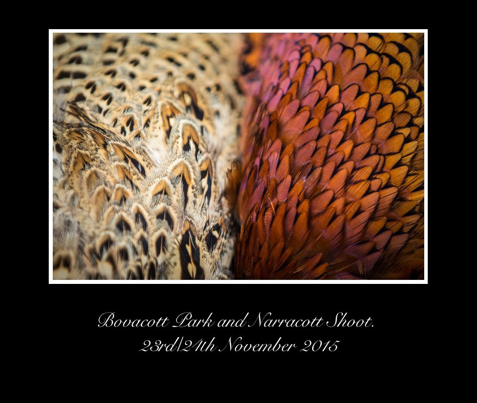 View Bovacott Park and Narracott Shoot. 23rd/24th November 2015 by Dean Mortimer