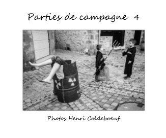 Parties de campagne 4 - Portfolios livre photo