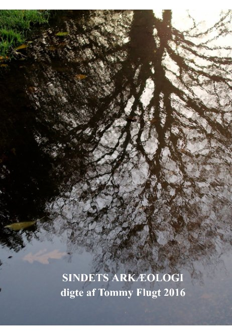 View SINDETS ARKÆOLOGI by Tommy Flugt