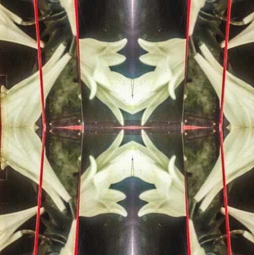 View xamaniac | 01 by Rodrigo Rocha