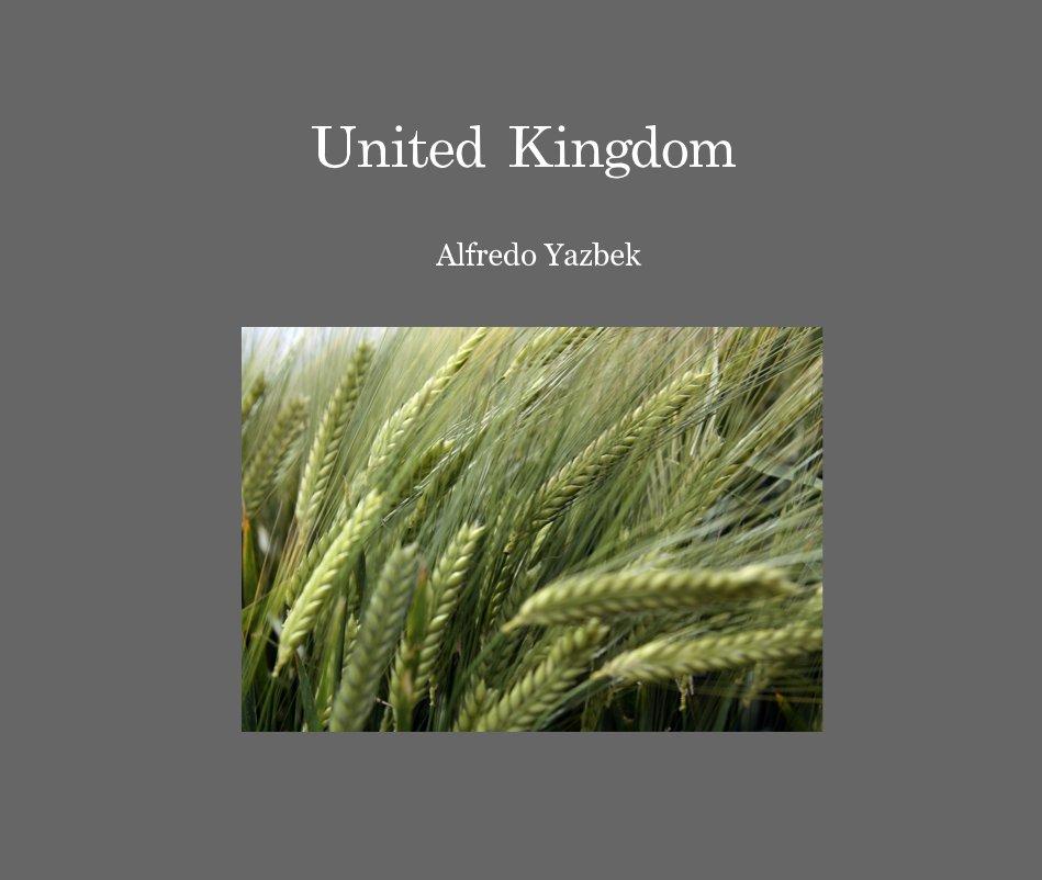 View United Kingdom by Alfredo Yazbek