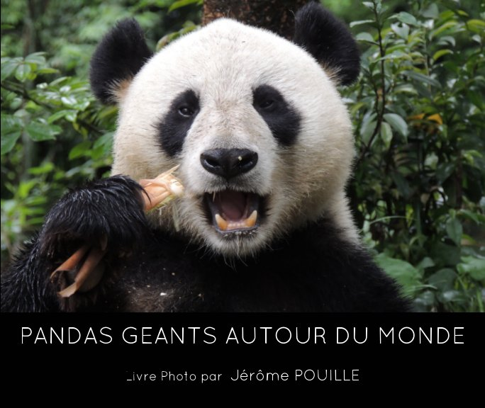 View Pandas géants autour du monde by Jérôme POUILLE