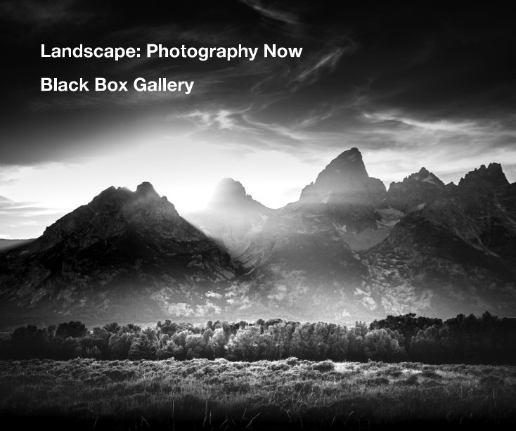 View Landscape: Photography Now by Black Box Gallery