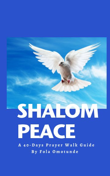 View Shalom Peace by Fola Omotunde