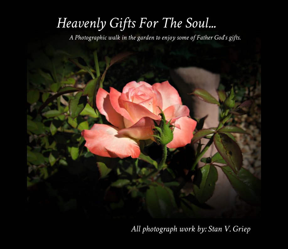 View Heavenly Gifts For The Soul... by Stan V. Griep