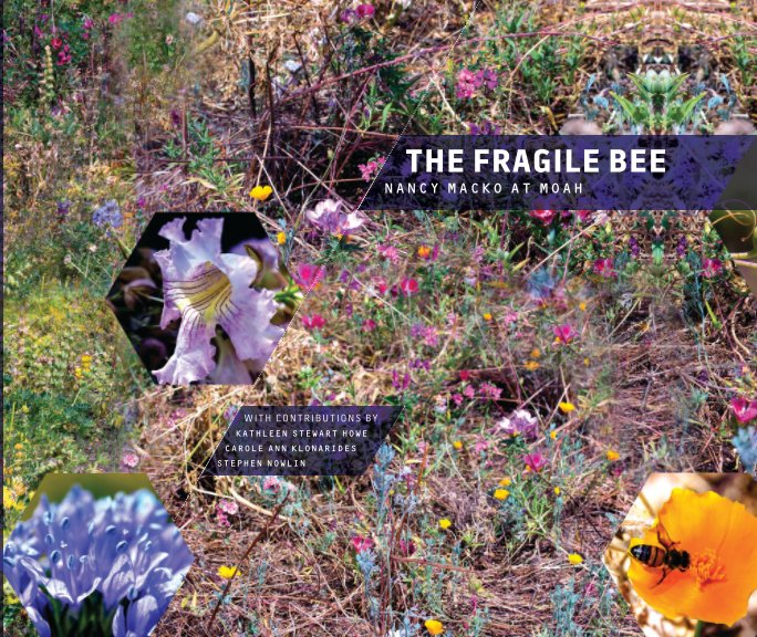 View The Fragile Bee: Nancy Macko at MOAH by Howe, Klonarides, Nowlin