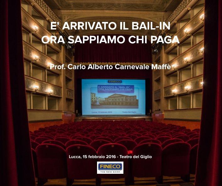View E' Arrivato il Bail-in. Ora sappiamo chi paga. by Paolo Marabotti