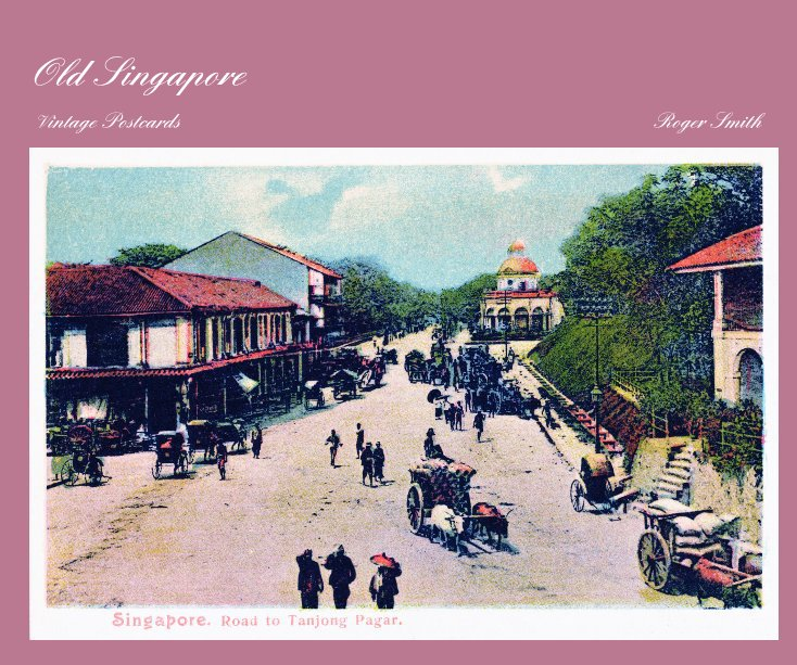 View Old Singapore by Roger Smith
