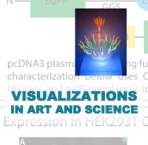 Visualizations in Art and Science - Arts & Photography Books photo book