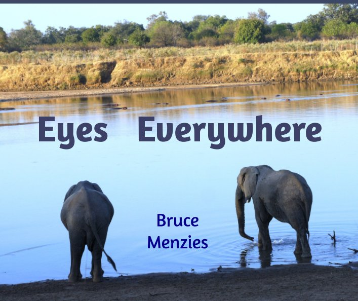 View Eyes Everywhere by Bruce Menzies